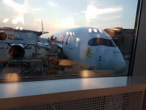 Frankfurt Flughafen - das Flugzeug