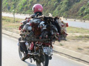 Fahrt nach Karatu