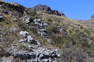 Transfer von Cuenca nach Guayaquil - Cajas Nationalpark
