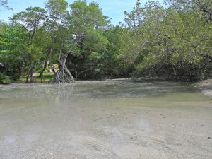 Tamarindo - Nachmittag am Strand